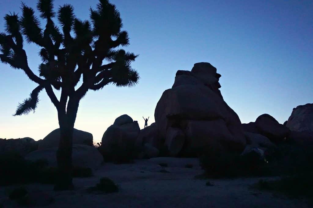 joshua tree rock sunset