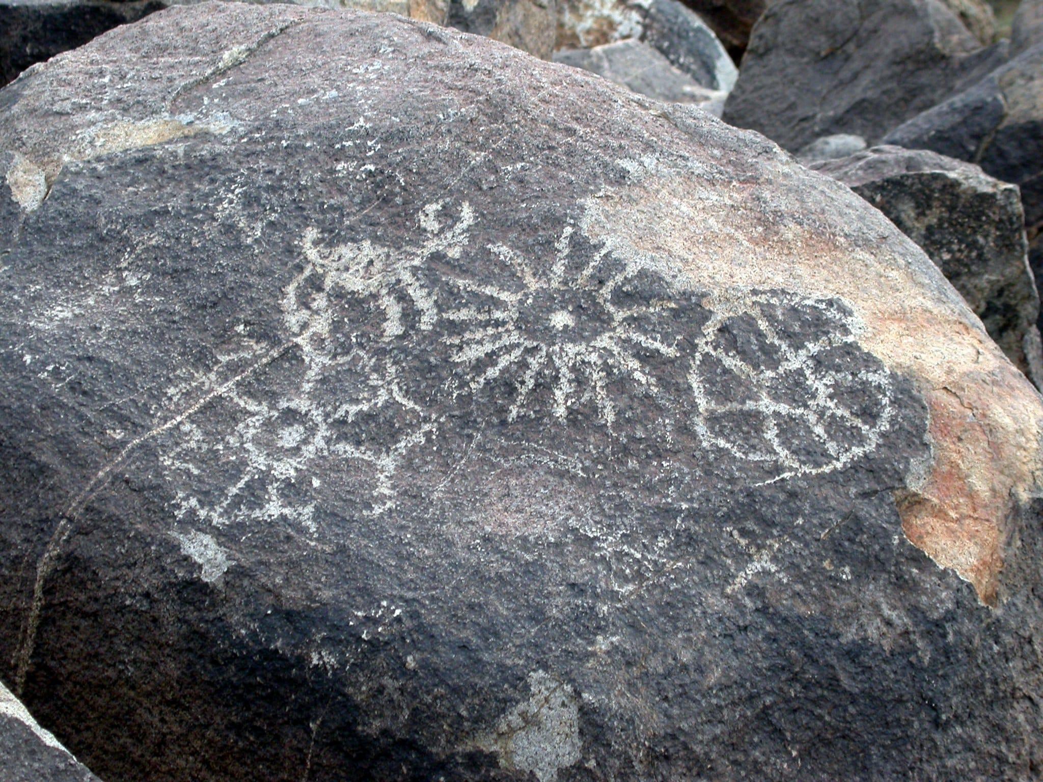 Signal Hill Petroglyph AreaSagauro National Park