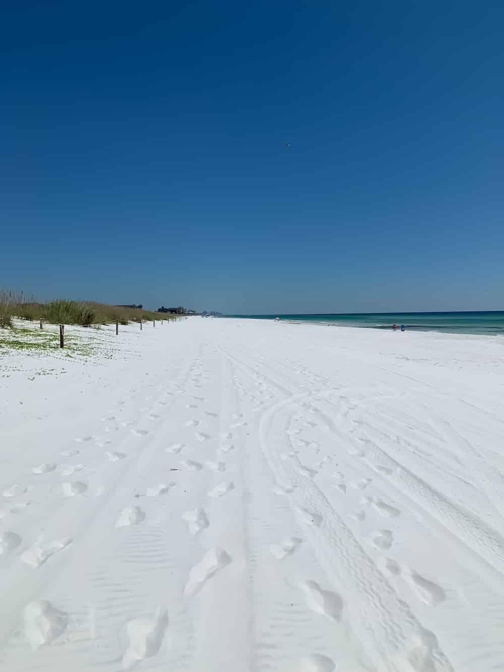 Henderson-beach-state-park-florida