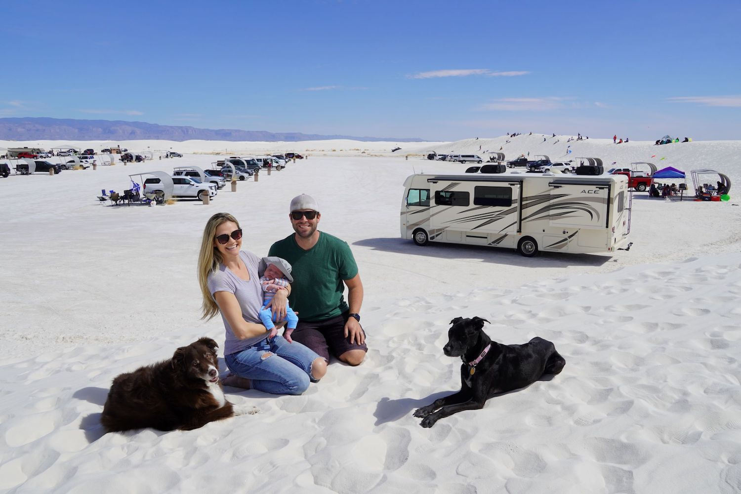 RVing with baby and dogs