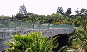 Custom designed bridge railings available in many color and coating options