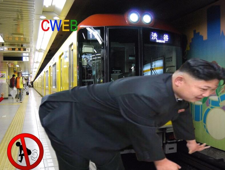 Tokyo_Metro_1000_series_tameikesannoustation.JPG