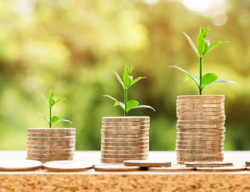 profitable-investment-e-commerce