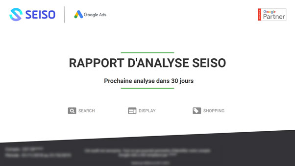 Seiso analysis report