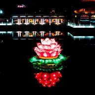 lotus_at_night copy