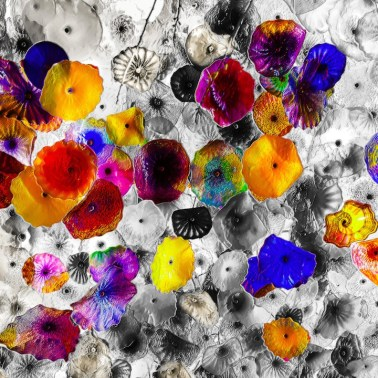 floating_flowers_blackwhite_2_rought_pastels copy