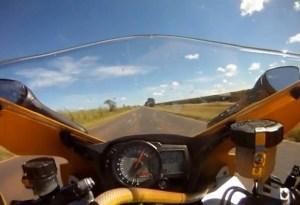 snake-on-motorcycle