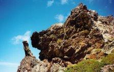 corsica-2000-07-montagne-corse-tete-cochon