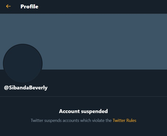 IHarare Monday News: Twitter suspends fake Bev account