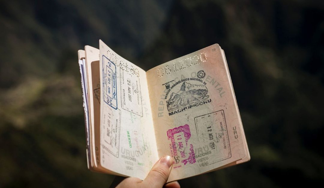 South Africa Now Reviewing Visas, Permits Issued Since 2004