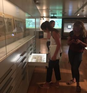 Tour of The National Bank of Greece Museum