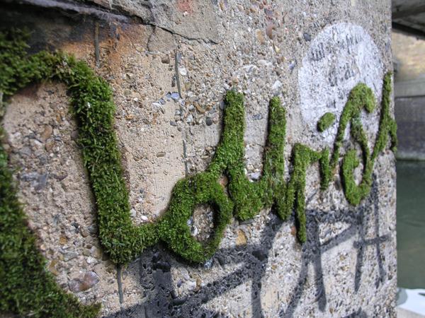 eco graffiti  nourishintro New Trend : The Eco Graffiti