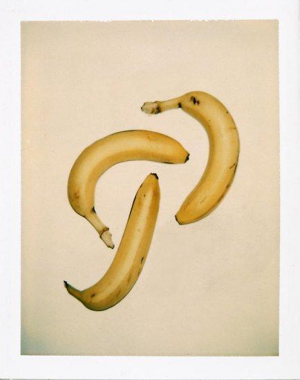 andy-warhol-still-life-polaroids10