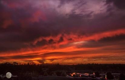 sunrise over the selkirk estuary