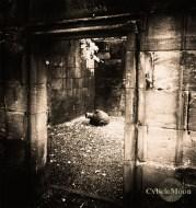 memento mori- Greyfriars