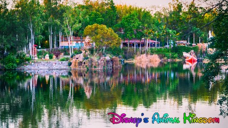 Animal Kingdom Aisa 1-30-2017