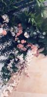 belledelphine_s_story_2018-12-06_14-09-28-038-qiTvjXSC.mp4