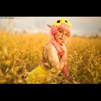 full_sunflower_010_CAA5B37092-4pTqOgI7.jpg
