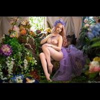 full_violetsbloom_044_2AFAF1BA49-1up4ieqX.jpg