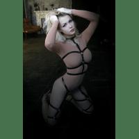 harness15-4YweIr.jpg