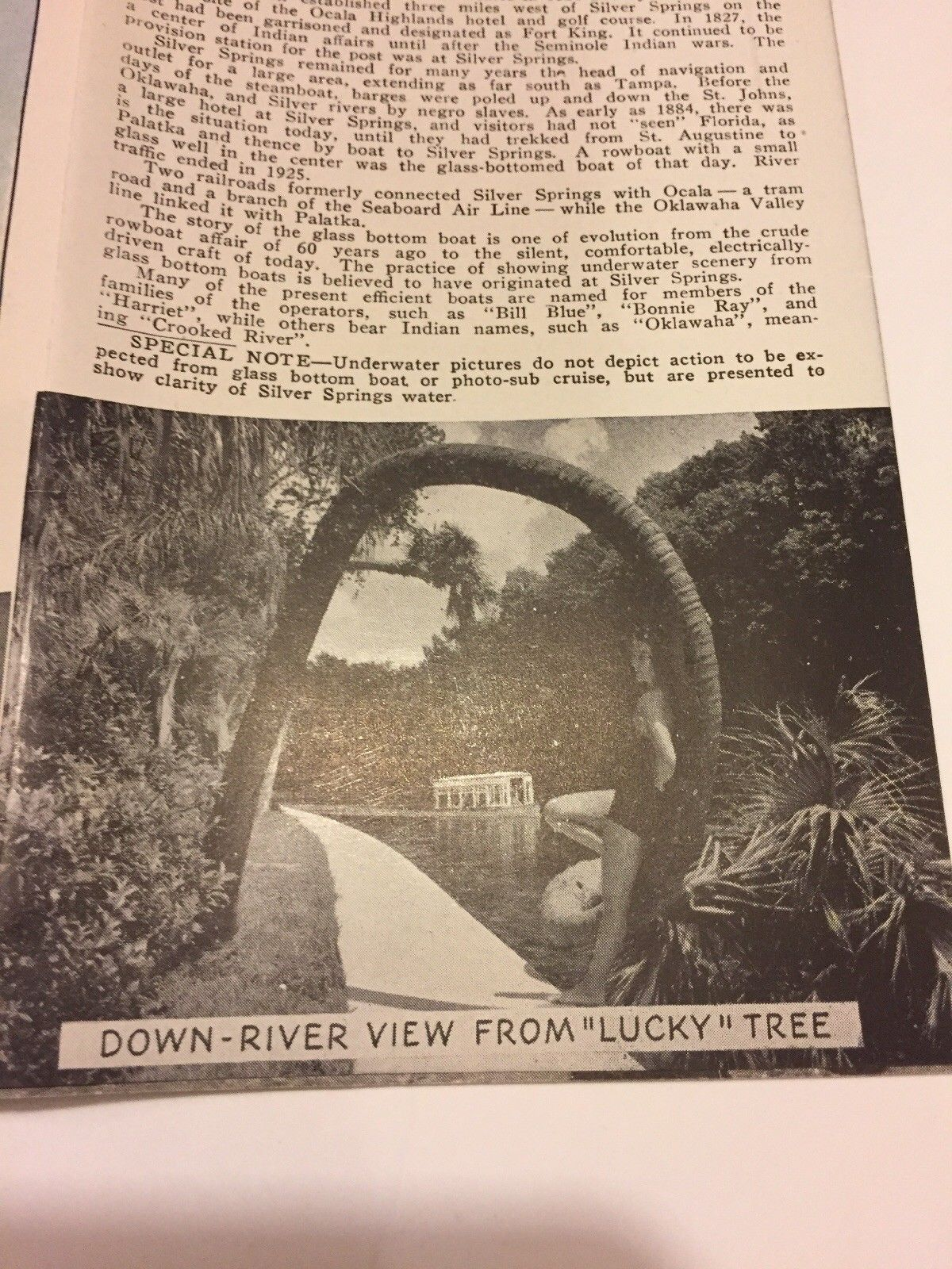 See Silver Springs Natures Underwater Fairyland Florida 1949 Travel  Brochure Map