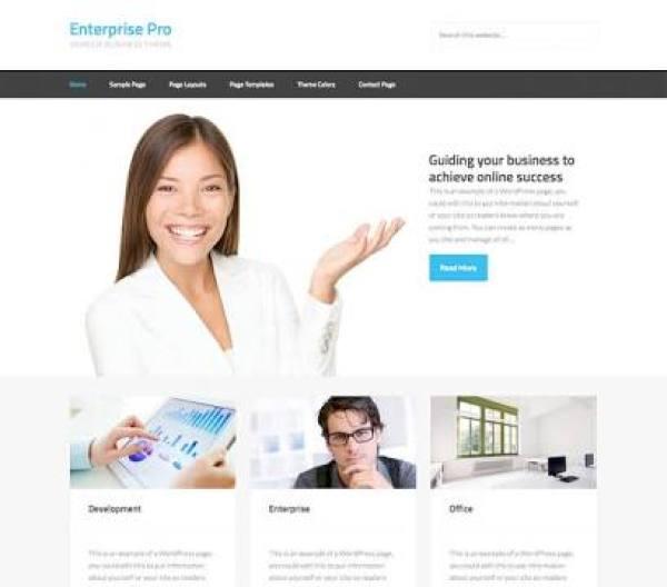 enterprise pro theme review