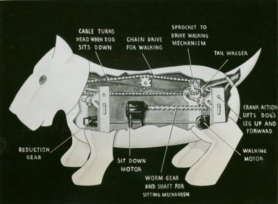 dog hind leg diagram calibre thermo fan wiring mechanical animal archives - cyberneticzoo.com