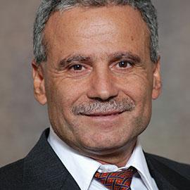 Salim Hariri