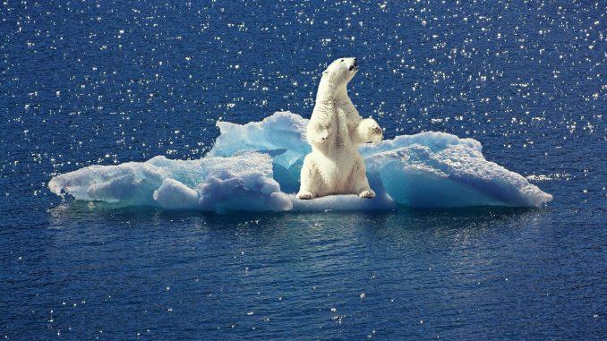 Gibt es eine Klimalüge?