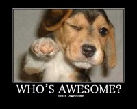 Who's awesome? Your awesome