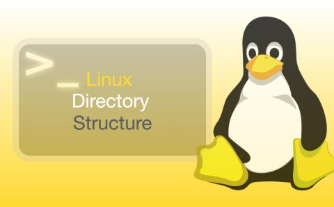 Linux Directory Structure and File System Explained