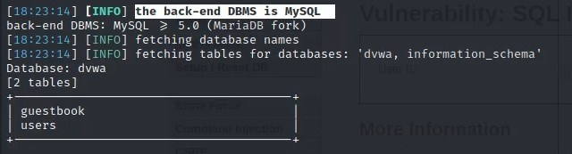 Showing sqlmap identifying the DBMS of the DVWA as well as databases and table names
