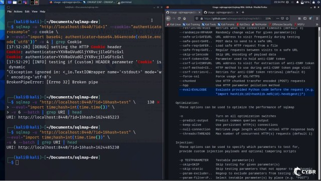 Using eval with sqlmap to write custom Python code that modifies data on the fly