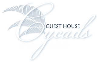 Cycads on Sea, Guestbook Comments