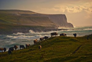 Cycle Holidays Ireland in Doolin