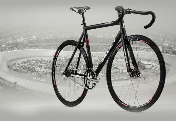 Raleigh Equipe 2