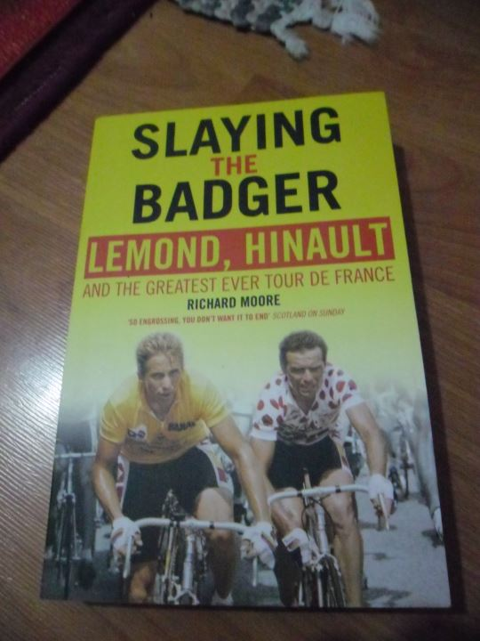 Slaying the Badger by Richard Moore