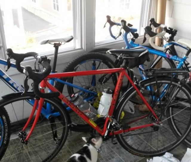 All Bike Thieves Should Be Banished How To Recover Stolen Bikes