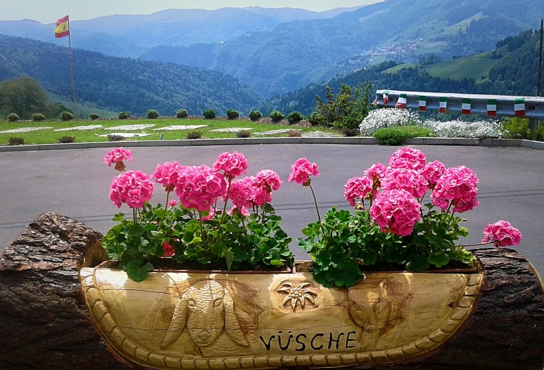 cycling-in-love_foza_penultima-tappa-giro-italia_fiori-rosa_altopiano-di-asiago