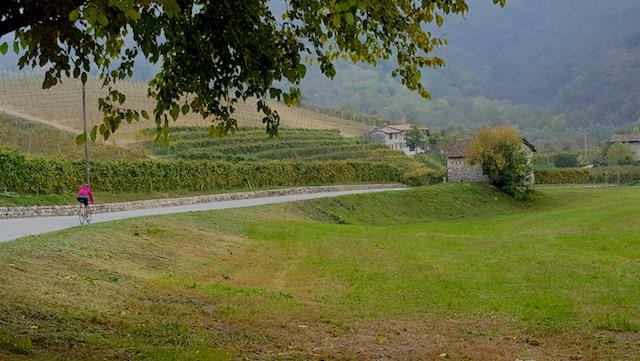 Strada del prosecco in bicicletta: una pedalata tra il patrimonio enogastronomico e paesaggistico di Valdobbiadene