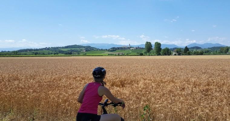 Ciclabile del Piave: da Valdobbiadene a Susegana (TV) in e-bike