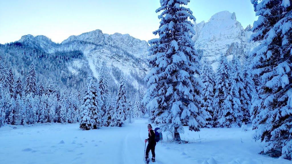 Trekking invernale nel tarvisiano: con le ciaspole nella valle di Riofreddo