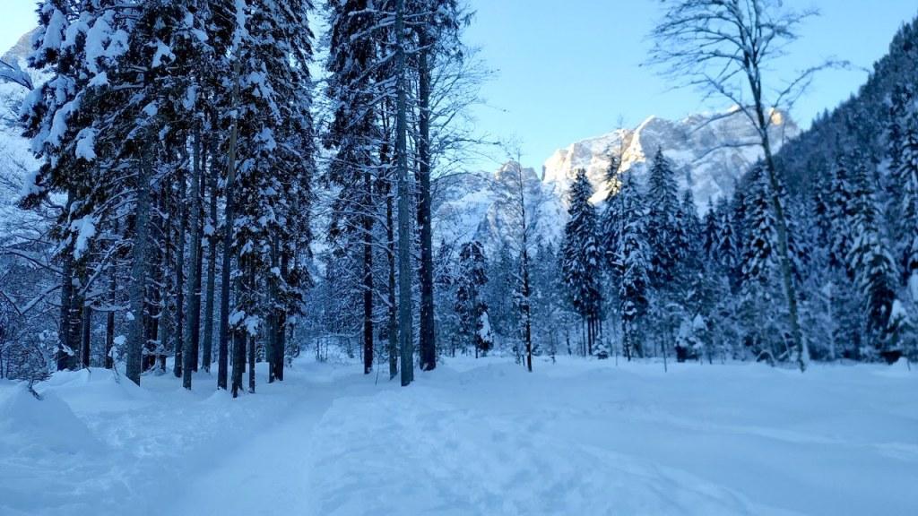 Traccia della Val Saisera wild track
