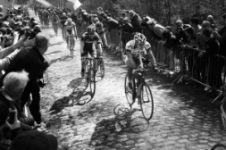 HYM - Paris Roubaix