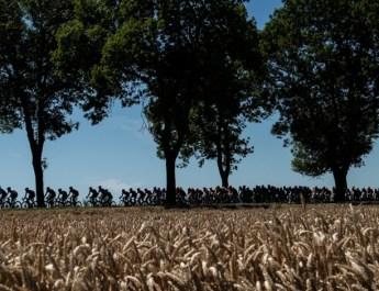 Découvrez les derniers transferts cyclistes du mercato 2019-2020