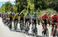 Peloton - 14e étape Tour de France 2020 - ASO Alex Broadway