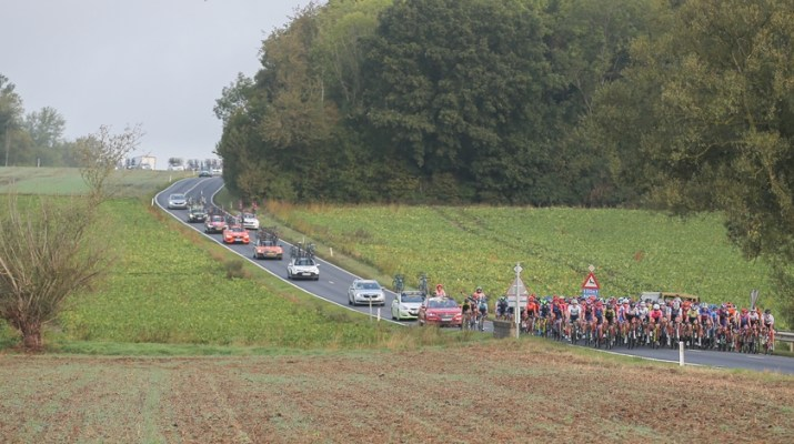 Peloton - Flèche Wallonne Féminine 2020 - ASO Thomas Maheux
