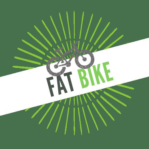 VTTAE Fat Bike
