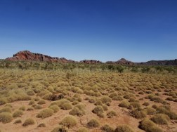 Spinifex and Domes