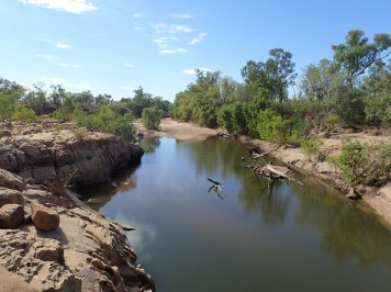 Billabong under the bridge. Complete with Johnston Crocodiles